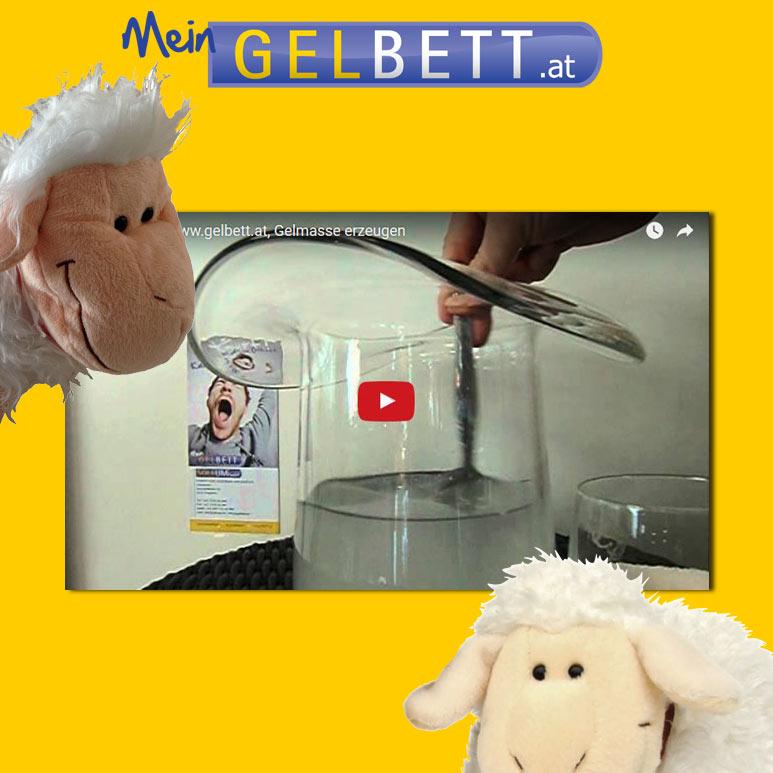 Gelbett Videos